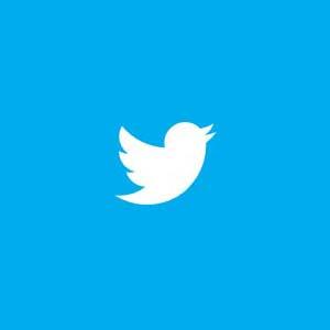 ¿Por qué Twitter fue hecho en Ruby on Rails?